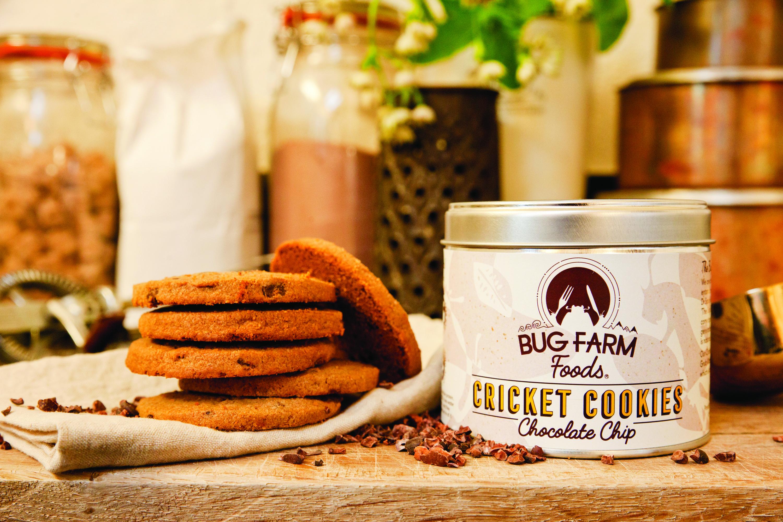 Bug Farm Foods - Cricket Cookies