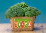 Broccoli_carbon labelling copy